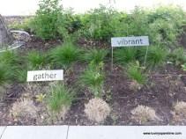 Downtown Minneapolis public garden art