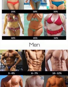 Body fat percentage chart with pictures also visual truth of percentages  luvthat rh