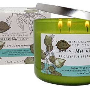 T&H Eucalyptus Spearmint Aromatherapy Candles Stress Relief
