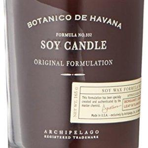 Archipelago Botanicals Botanico De Havana Soy Candle