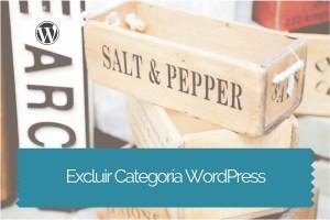 Excluir Una Categoria Wordpress