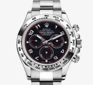 Rolex Or Gris 2