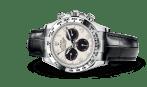 Rolex Or Gris 5