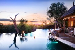 molori-safari-lodge (2)