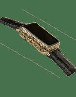 Apple watch legend