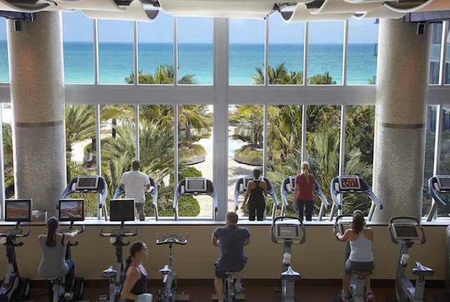 Bike to this view at Canyon Ranch Miami