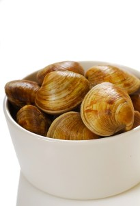 shutterstock_22091800-cherry-stone clams
