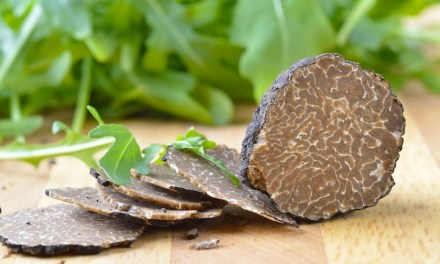 4th Annual Napa Truffle Festival, January 17-20, 2014