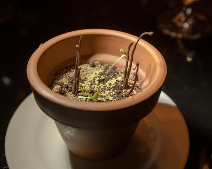 Chocolate Flower Pot Le Chique, Azul Sensatori