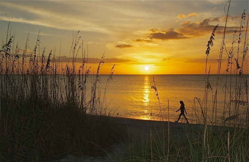 The perfect backdrop to any day is a walk on the beach and this stunning sunset, just steps from Gasparilla Inn.