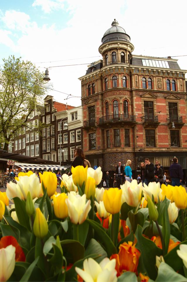 Tulip Time in Amsterdam