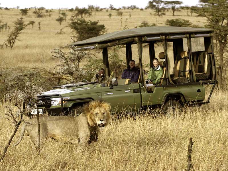 Mara Plains Camp Safari