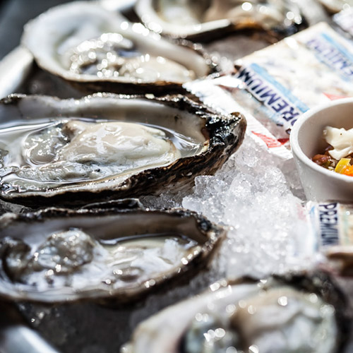 Oysters are a star at Holley's