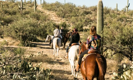 In the Saddle at Tanque Verde Dude Ranch