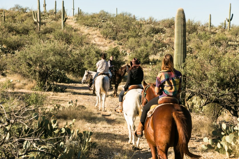 On the Trail at Tanque Verde Ranch