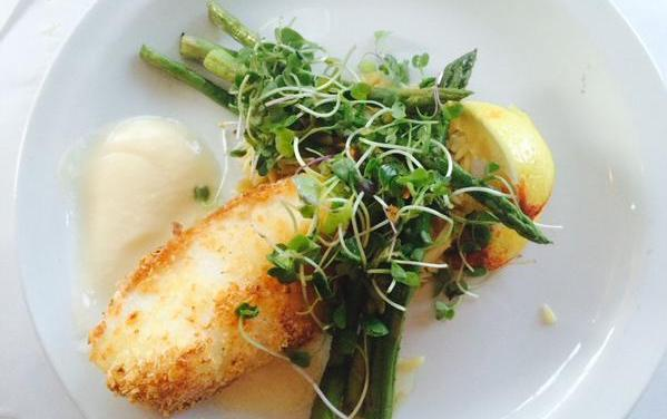 Gourmet Dining at the Harbor Fish Market and Grille