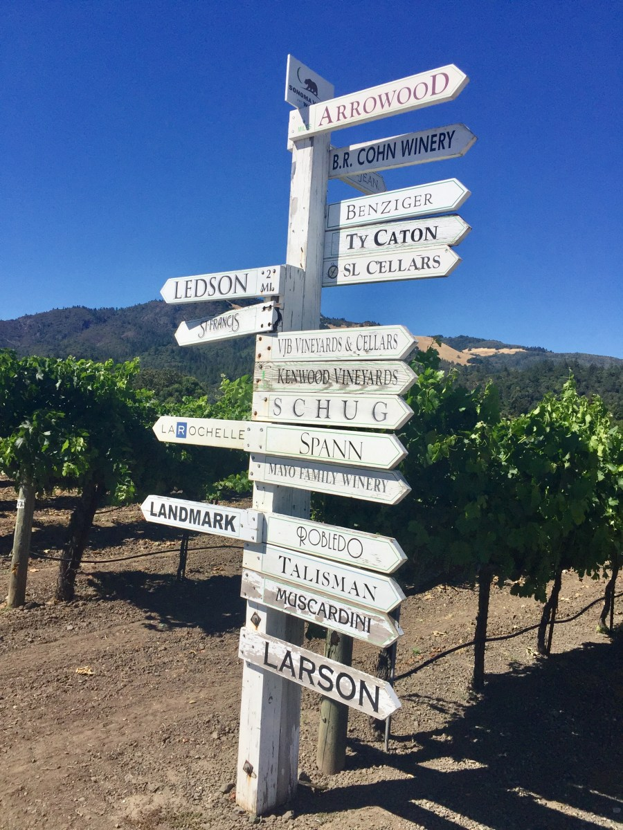 Napa and Sonoma Valley Wine 101