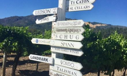 Napa and Sonoma Valley Wine 101