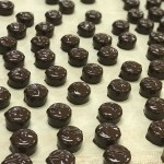 Exclusive See's Candies Chocolate Tour