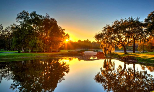 Innisbrook Golf Resort and Spa: A Photo Journey