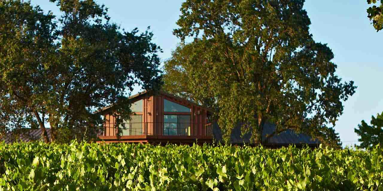 Benovia Winery Announces New Leadership Structure