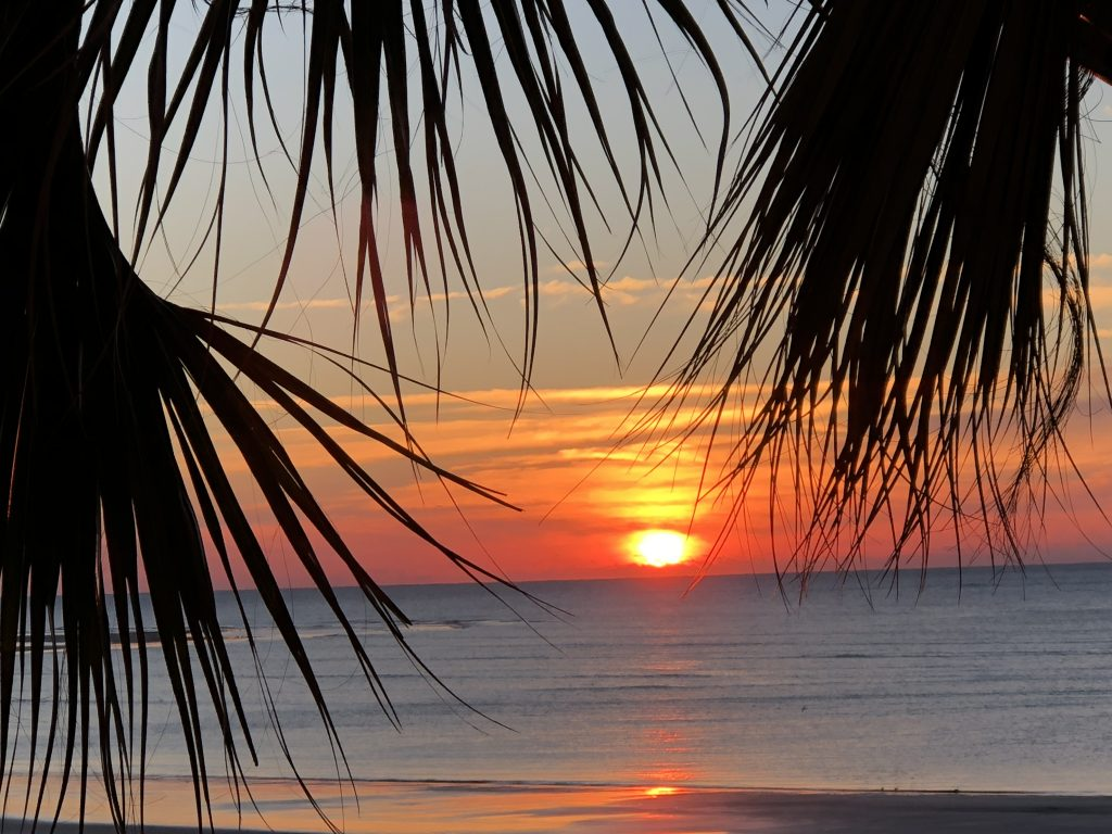 St Simoms Island, GA Debbie Stone