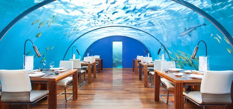 Ithaa underwater dining