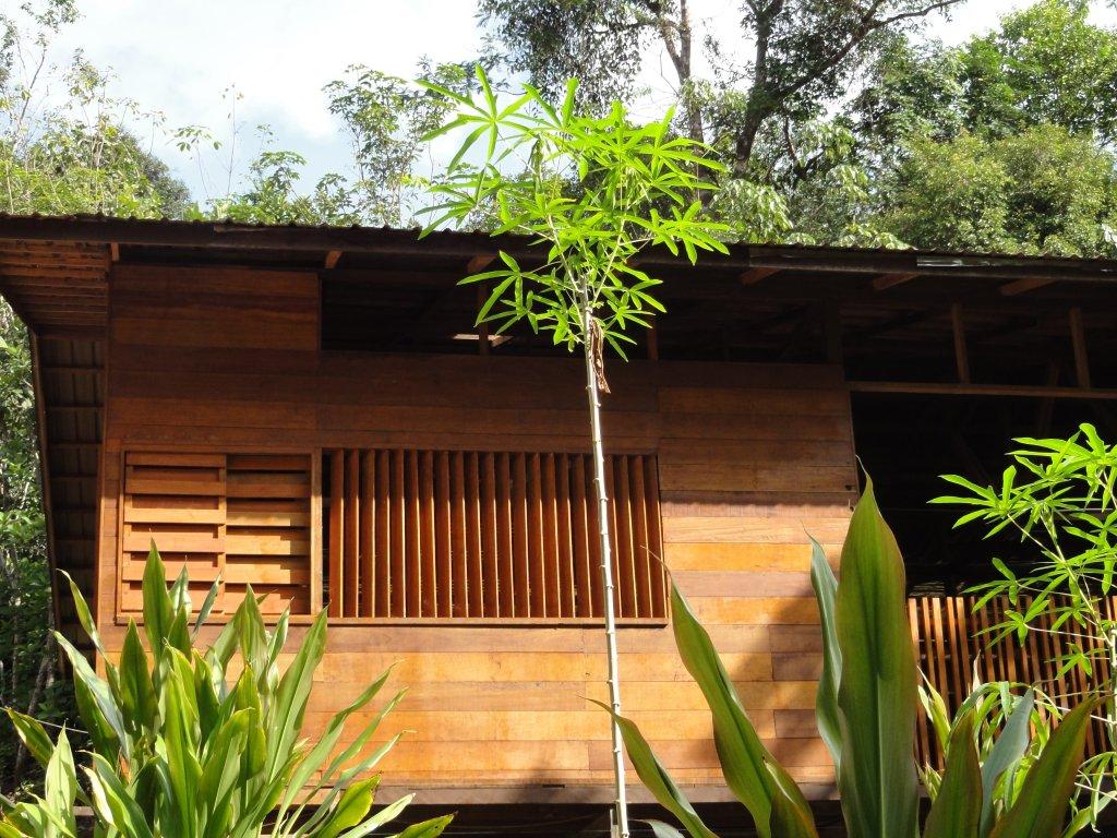 Borneo, sarawak-NSLodge-ruai-02