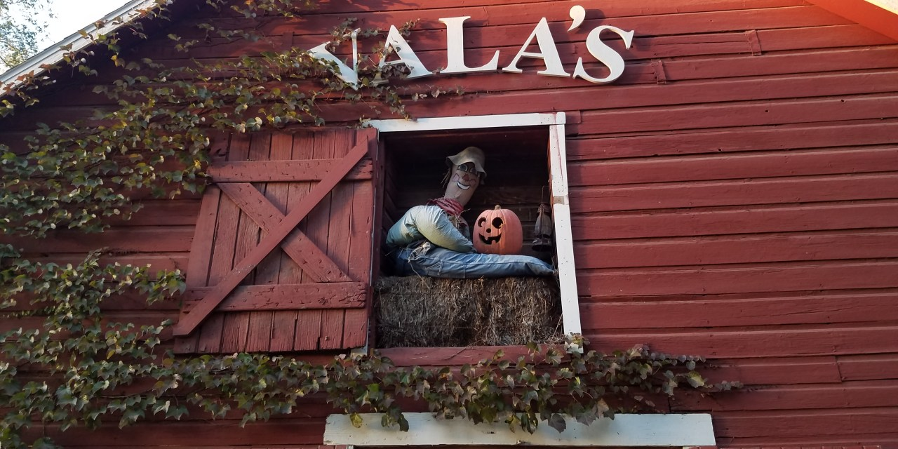 Vala's Pumpkin Patch: Holiday Family Fun In Nebraska