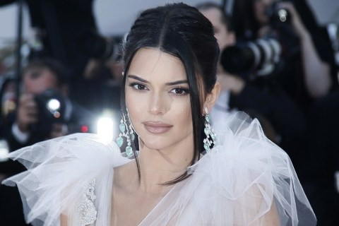 Kendall Jenner Which of the celebrities left social networks and how much they were enough
