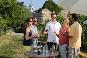 AmaWaterways | Group Wine Tasting