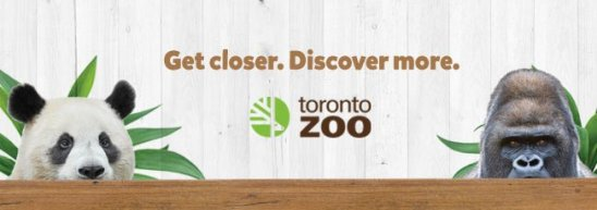 LuxeGetaways - Luxury Travel - Luxury Travel Magazine - Luxe Getaways - Luxury Lifestyle - Digital Travel Magazine - Travel Magazine - 10 Reasons To Visit Toronto Canada - Toronto Zoo