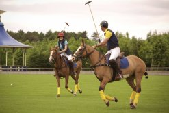 LuxeGetaways | Courtesy Ellenborough Park - Polo