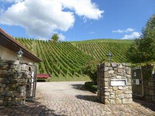 LuxeGetaways_Credit-Janice-Tober_Weingut-Schloss-Neuweier