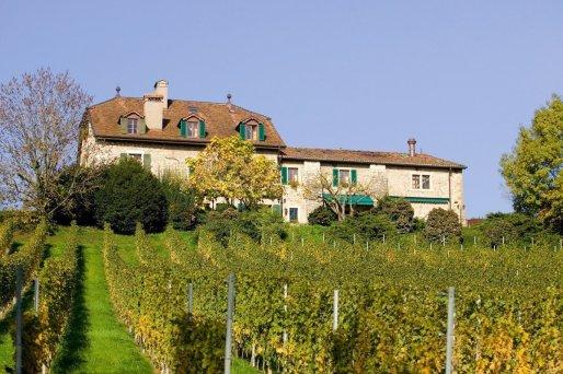 credit-geneva-tourism-chateauvieuxarnaudchilderic-2