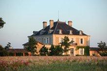 Chateau Haut Bailly, Leognan, Bordeaux, France