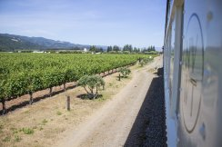 LuxeGetaways - Luxury Travel - Luxury Travel Magazine - Luxe Getaways - Luxury Lifestyle - Luxury Villa Rentals - Affluent Travel - Napa Valley Wine Train - Quattro Vino Tours - Napa Valley - California - train in vineyards