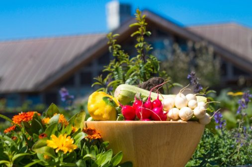 California | Inn at Newport Ranch, Fort Bragg - Garden