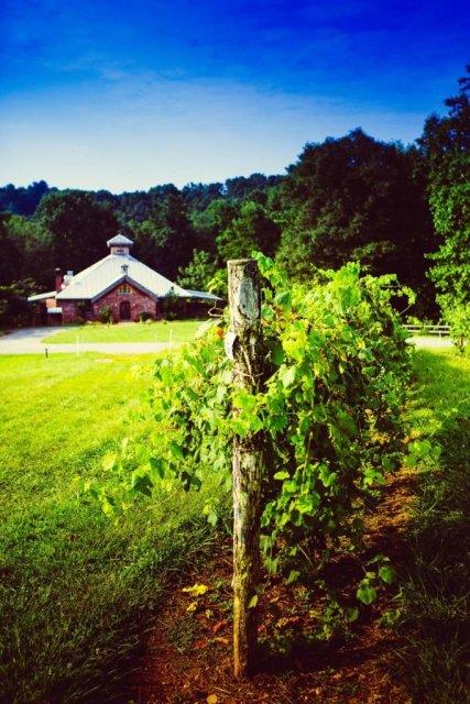 LuxeGetaways - Luxury Travel - Luxury Travel Magazine - Luxe Getaways - Luxury Lifestyle - North Carolina, NC, Winery, North Carolina Winery