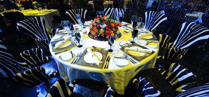 Cavalli Club Dubai An Enchanting Evening Awaits 3