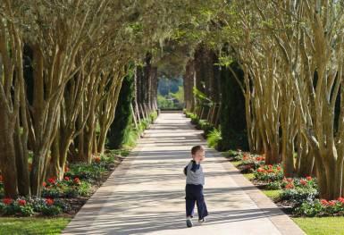 Four Seasons Orlando at Disney World