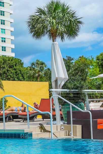 Mandarin Oriental Miami Pool