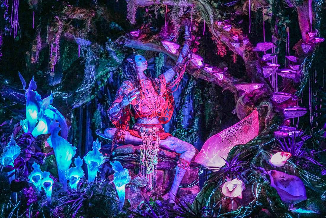 Image of: River Journey The Must Dos At Animal Kingdom Luxe Recess The Must Do Guide To The Disney Animal Kingdom Lodge And Theme Park