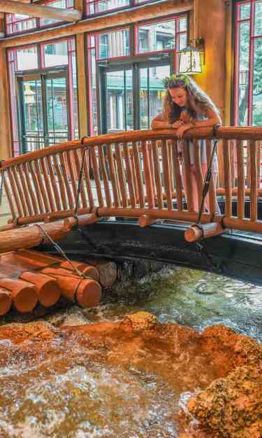 Copper Creek Disney Wilderness Lodge Cabins