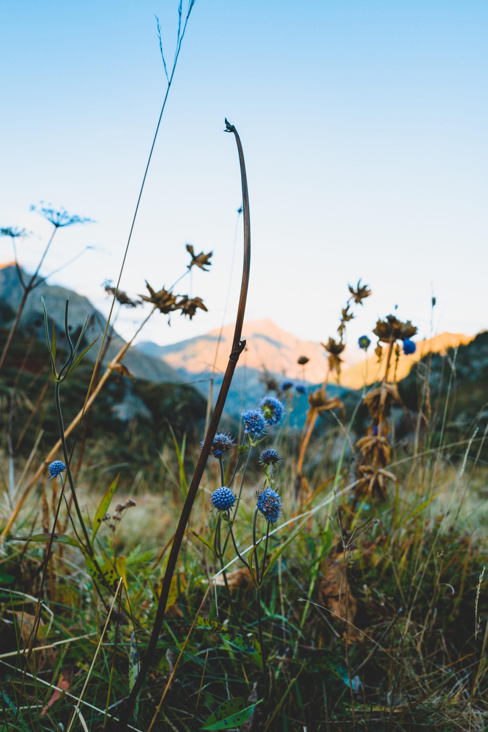 Rando Pyrénées près Andorre
