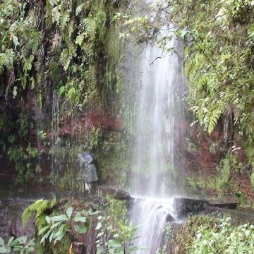 Waterfall in the levada path in Madeira found in walking holiday Madeira.