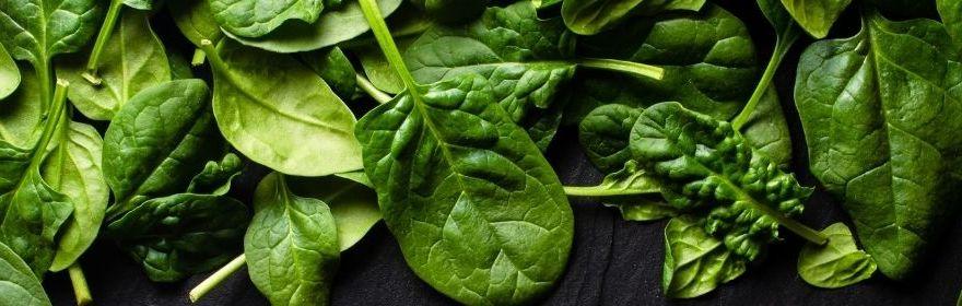 Les épinards, les légumes les moins caloriques !