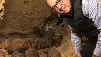 Photo of Exclusive Video: The Mummies Discovered by Minia University