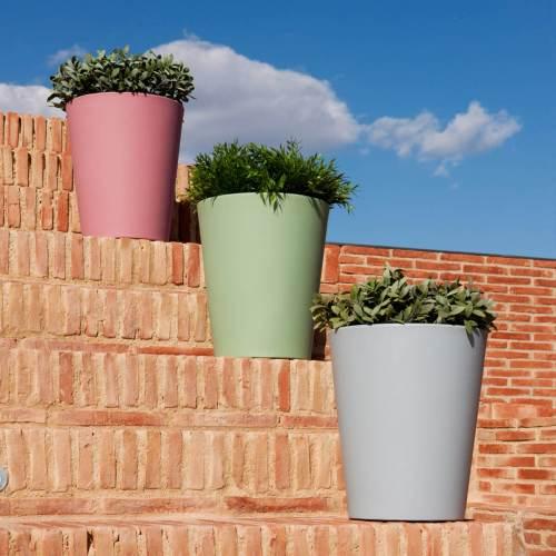 gerbera 33 plant pot 2
