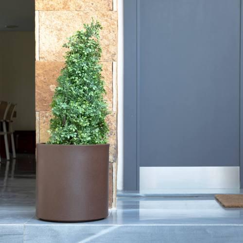 hortensia plant pot 1